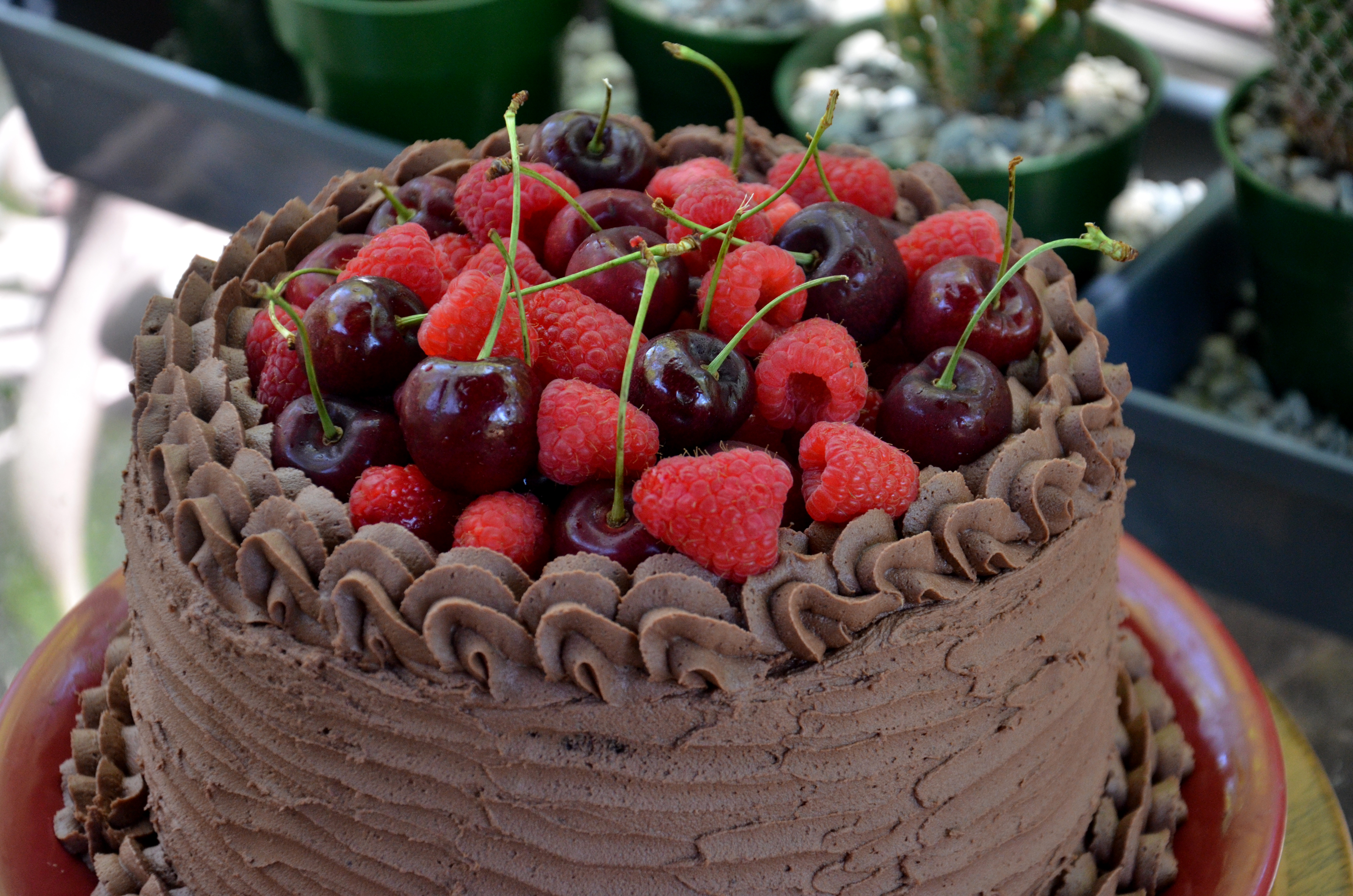 Classic Chocolate Cake With Summer Fruit Kats Cakes